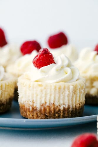 Close up of mini cheesecakes with raspberries.