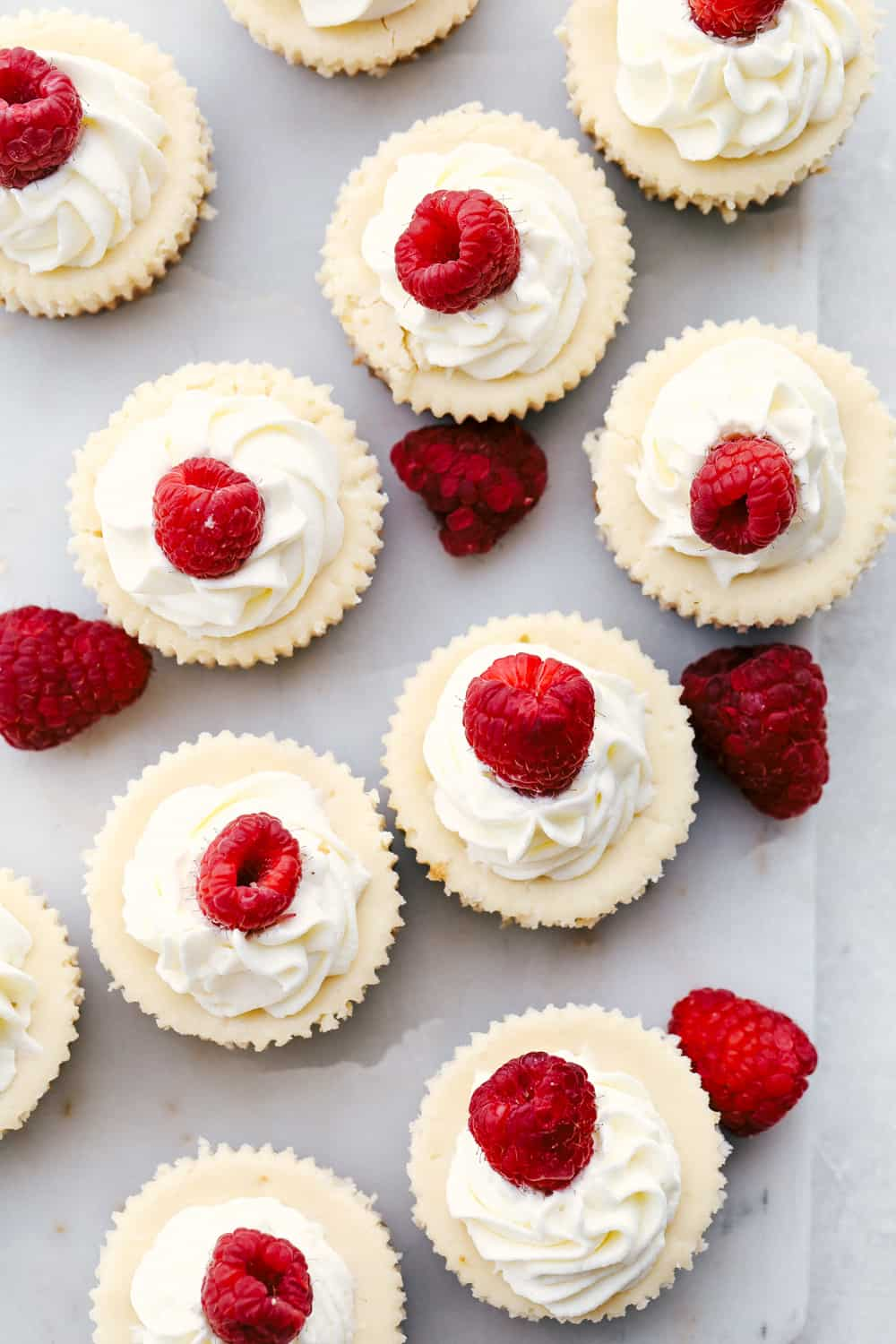 Looking down on cheesecake cupcakes topped with whip cream and raspberries.