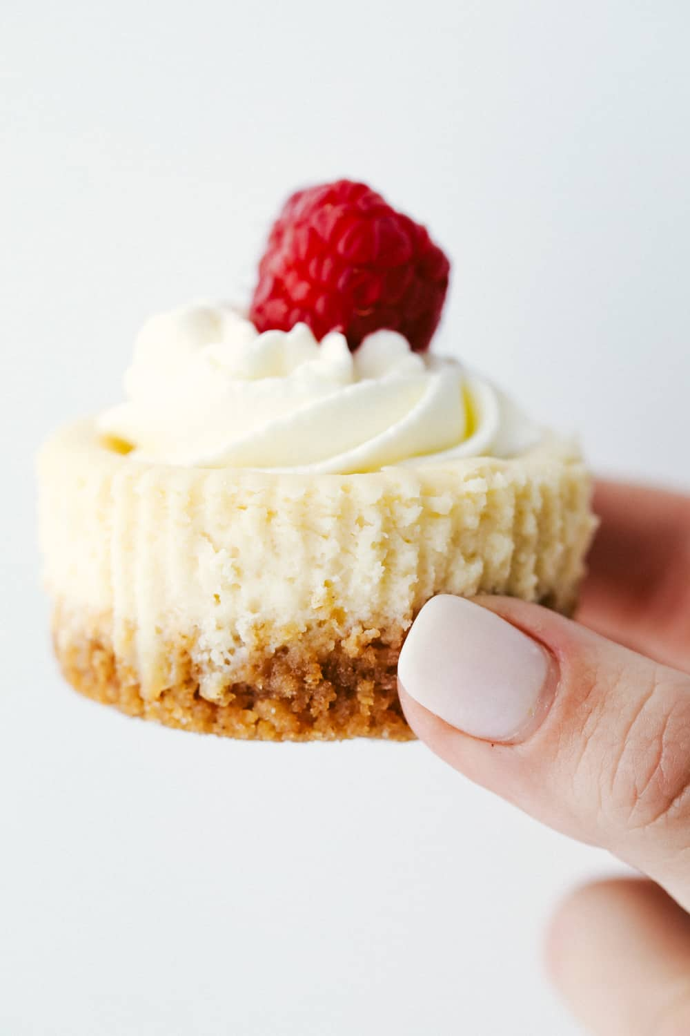 Hand holding a mini cheesecake with whipped topping and a raspberry.