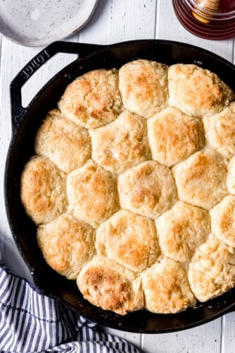 golden brown homemade biscuits in a pan