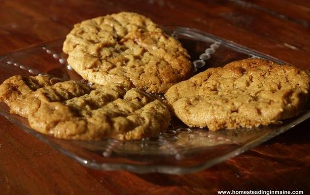 Flour-Less Peanut Butter Cookies